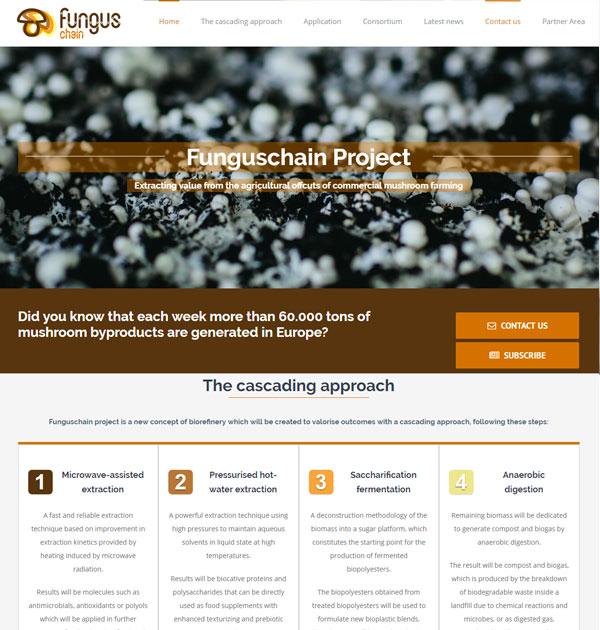 Diseño Web Zaragoza - Desarrollo de páginas Web